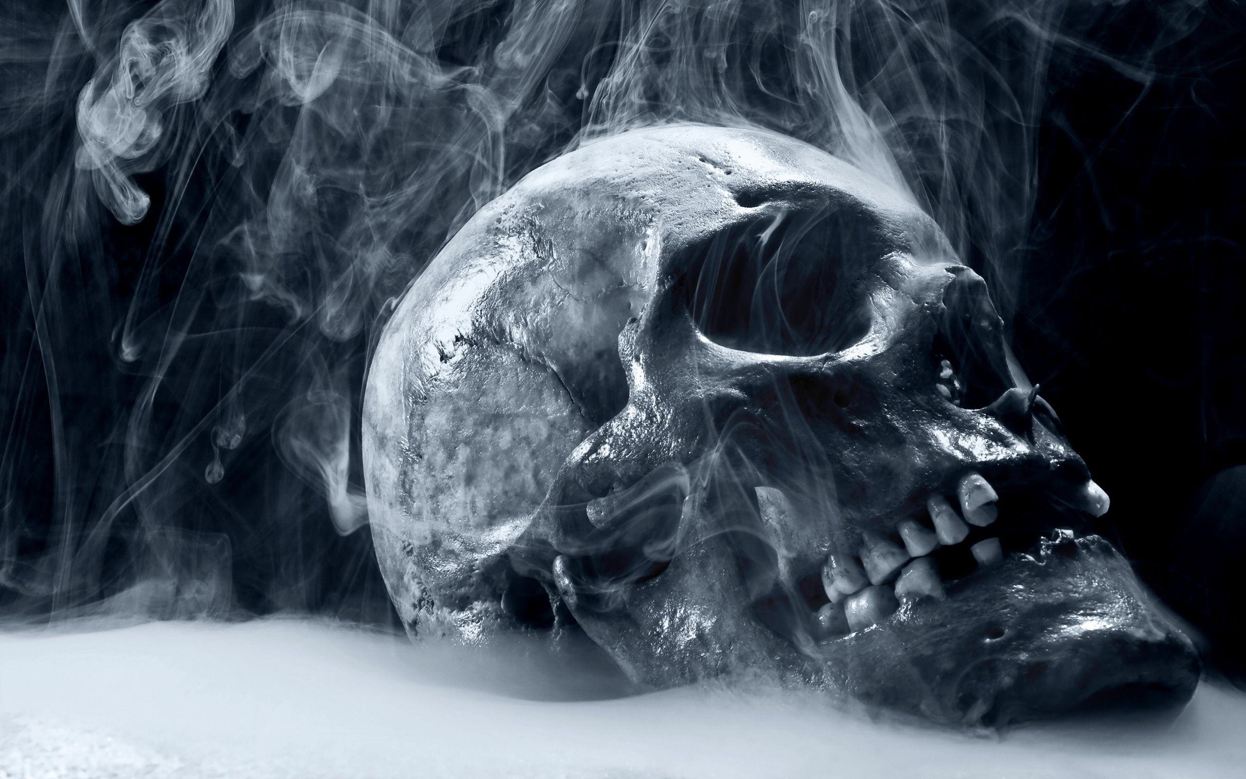 Skull Wallpapers For Android Group 32