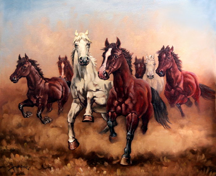 27 7 Running Horses Backgrounds Hq Demi Bowley