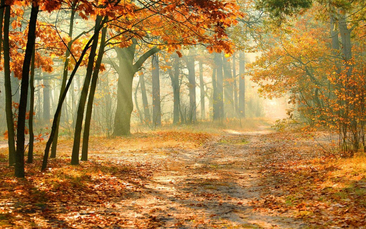 autumn the best season of all