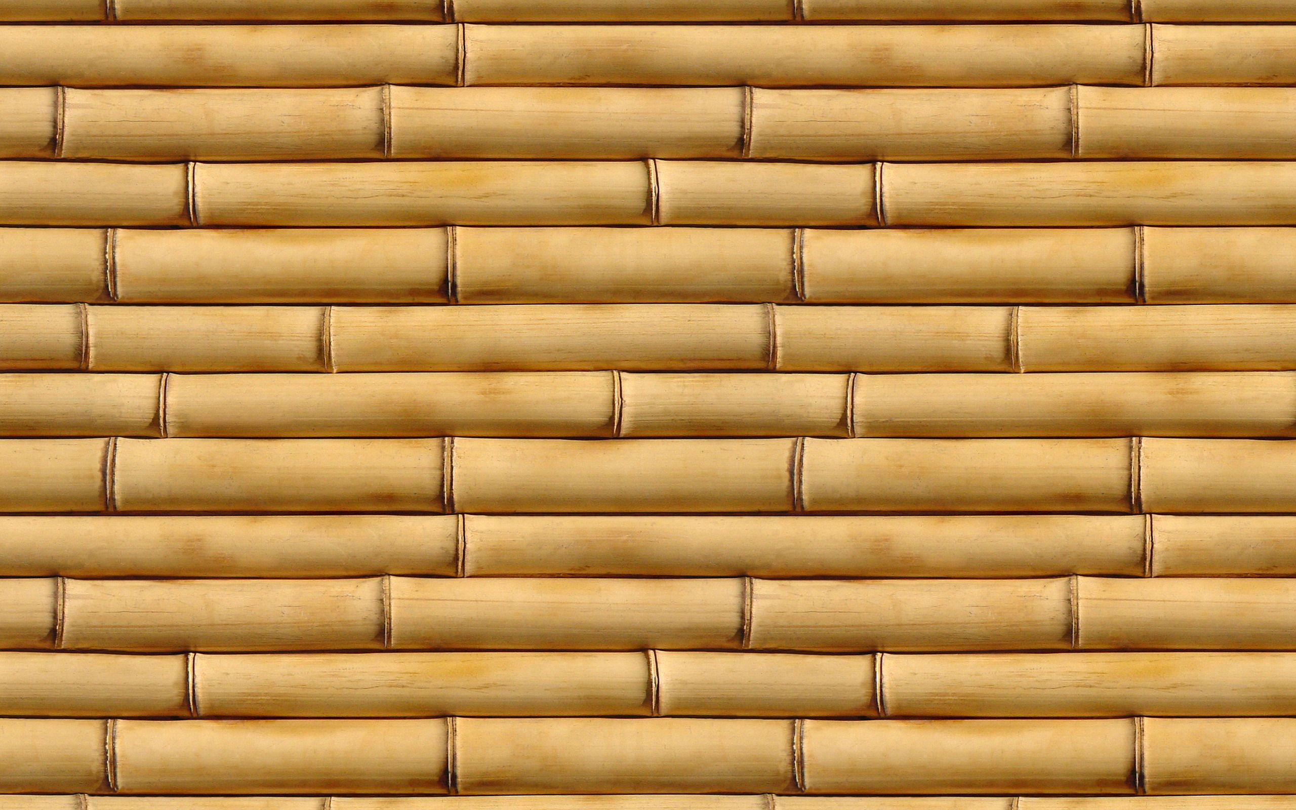 bamboo-backgrounds