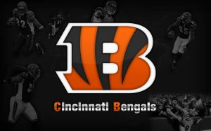 Bengals Wallpaper HD