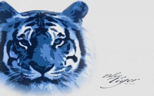 Blue Tiger Wallpaper