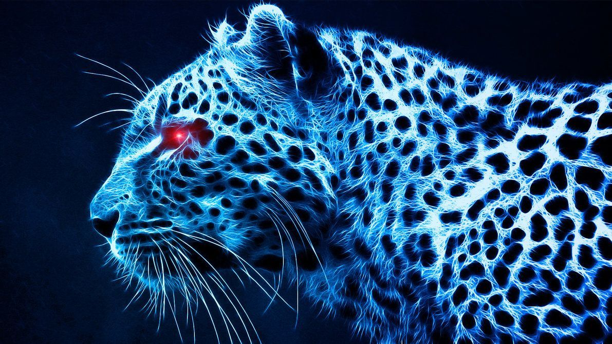 cool-tiger-wallpapers