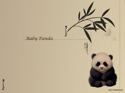 Pictures Of Cartoon Panda