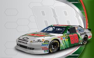 Pictures Of Dale Jr