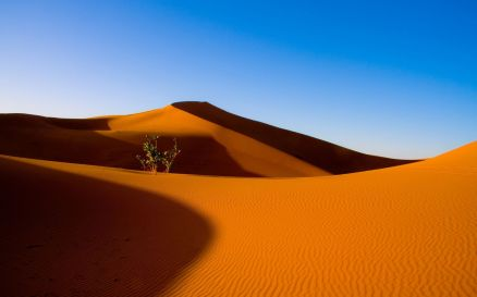 Images Of Desert