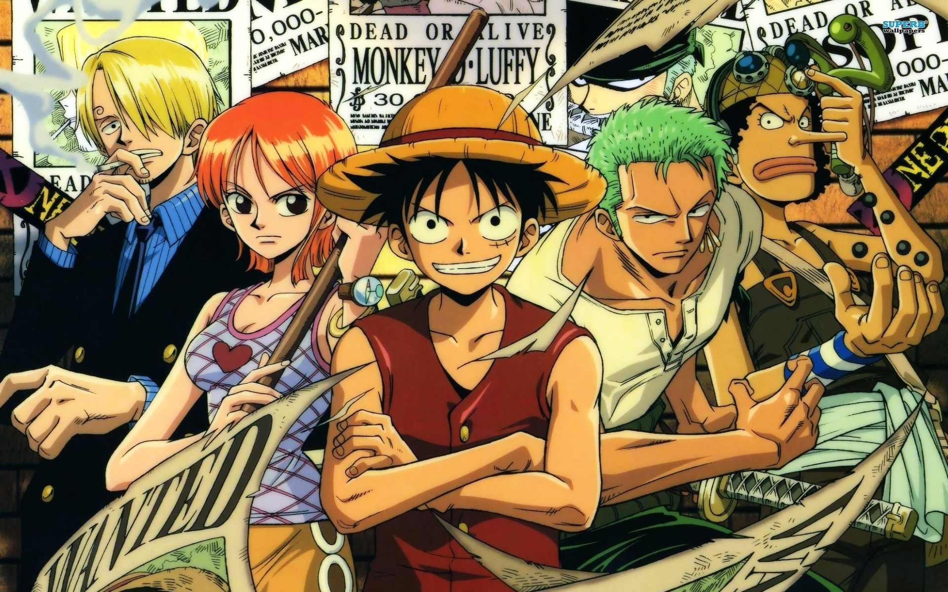 One Piece - Pic, Gallery 521941203