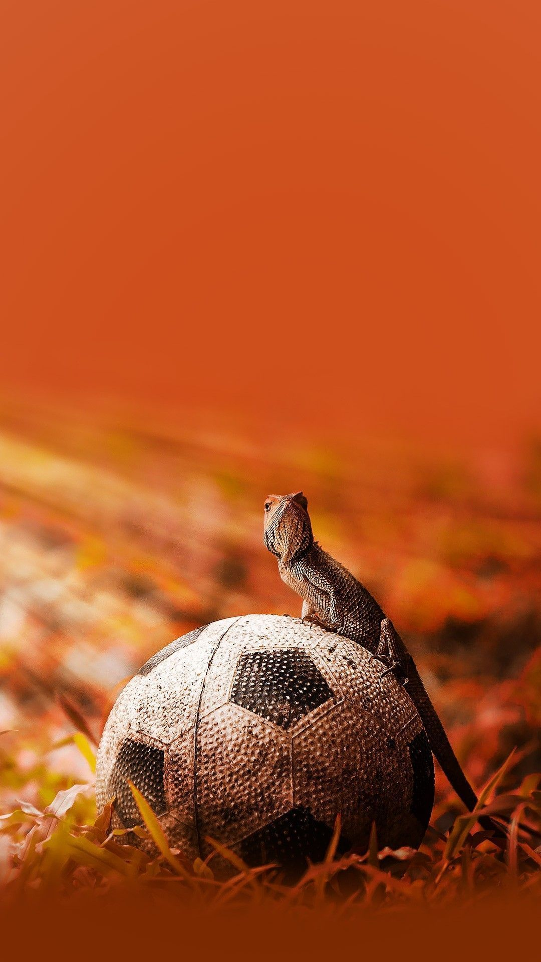 football-ball-wallpaper