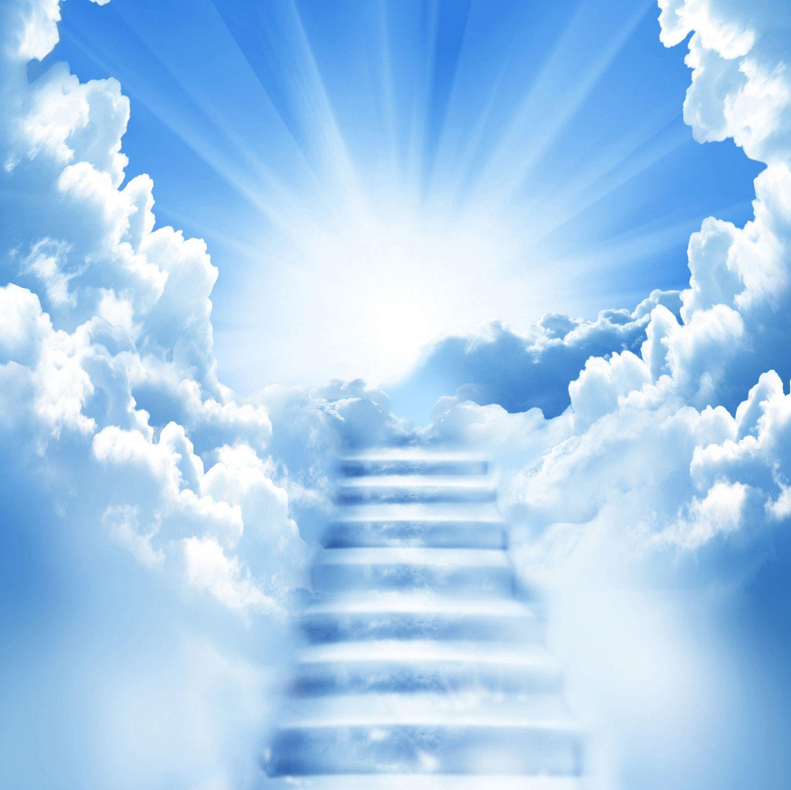 funeral program background – Funeral Program Background