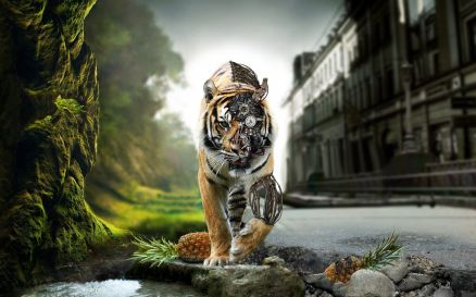 Image Tiger Widescreen