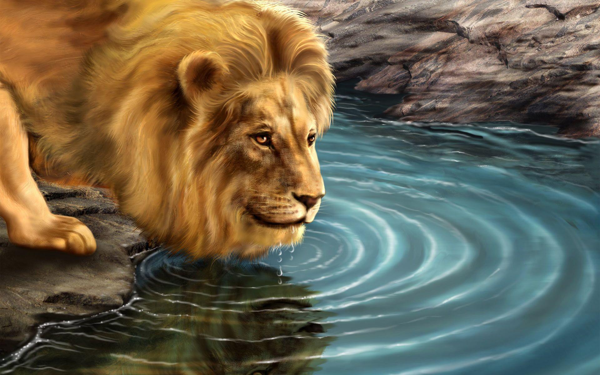 Wallpaper download lion - Lion Wallpaper