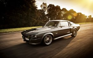 Mustang Shelby Wallpaper