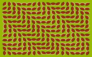 Optical Illusions Picture