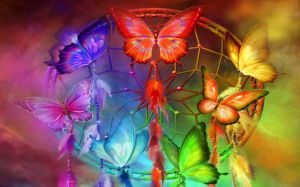 Pictures Of Rainbow Butterfly