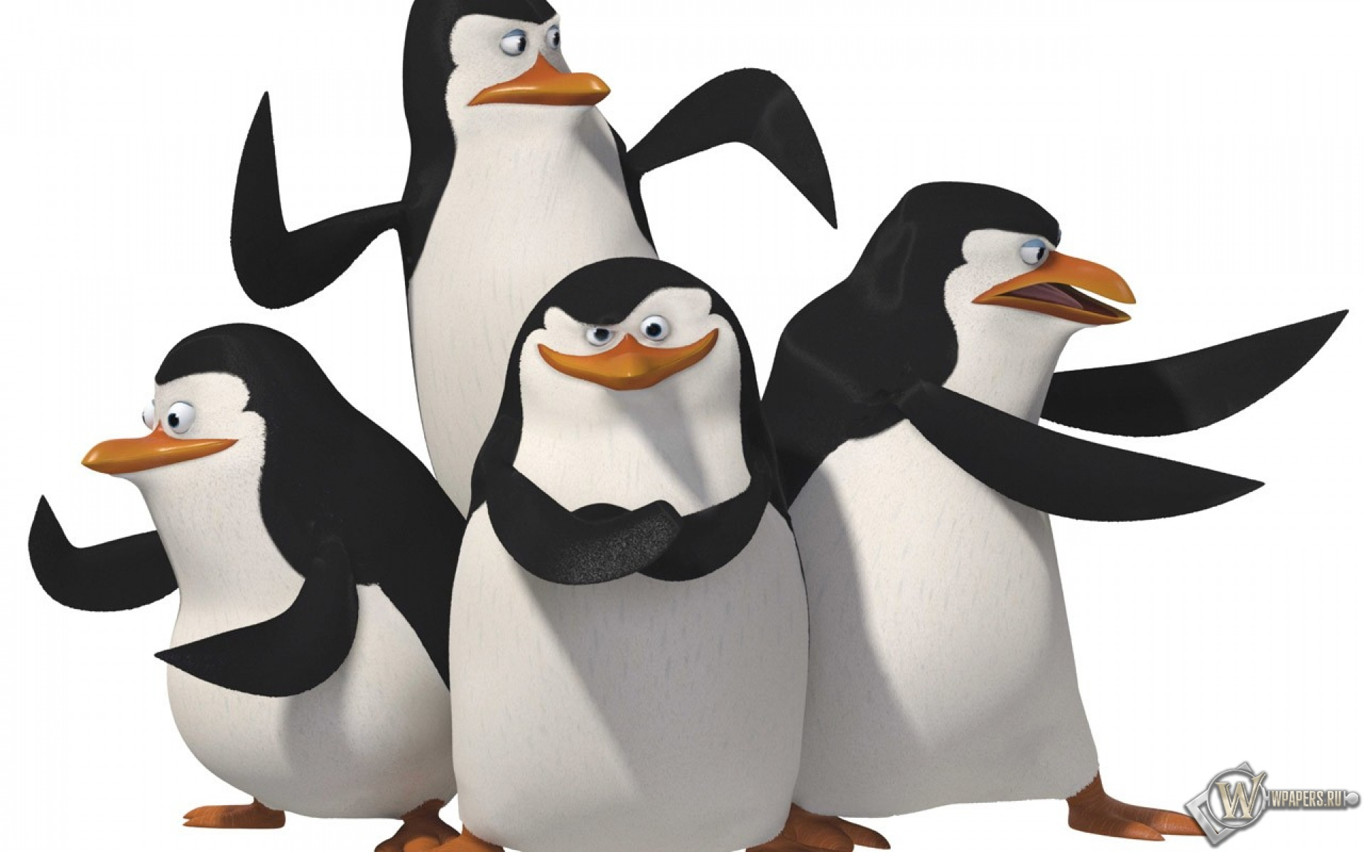 the-penguins-of-madagascar-wallpaper