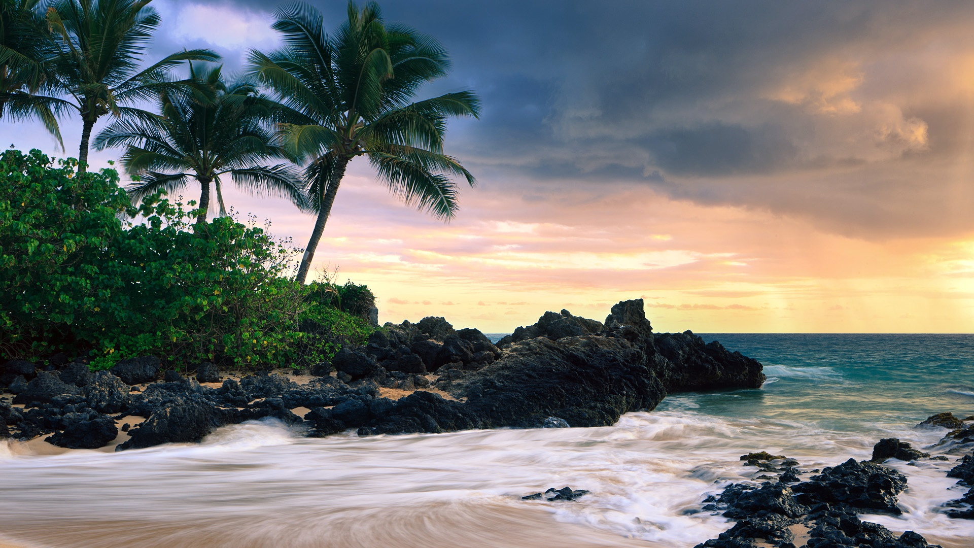 Tropical HD Wallpapers Backgrounds Wallpaper