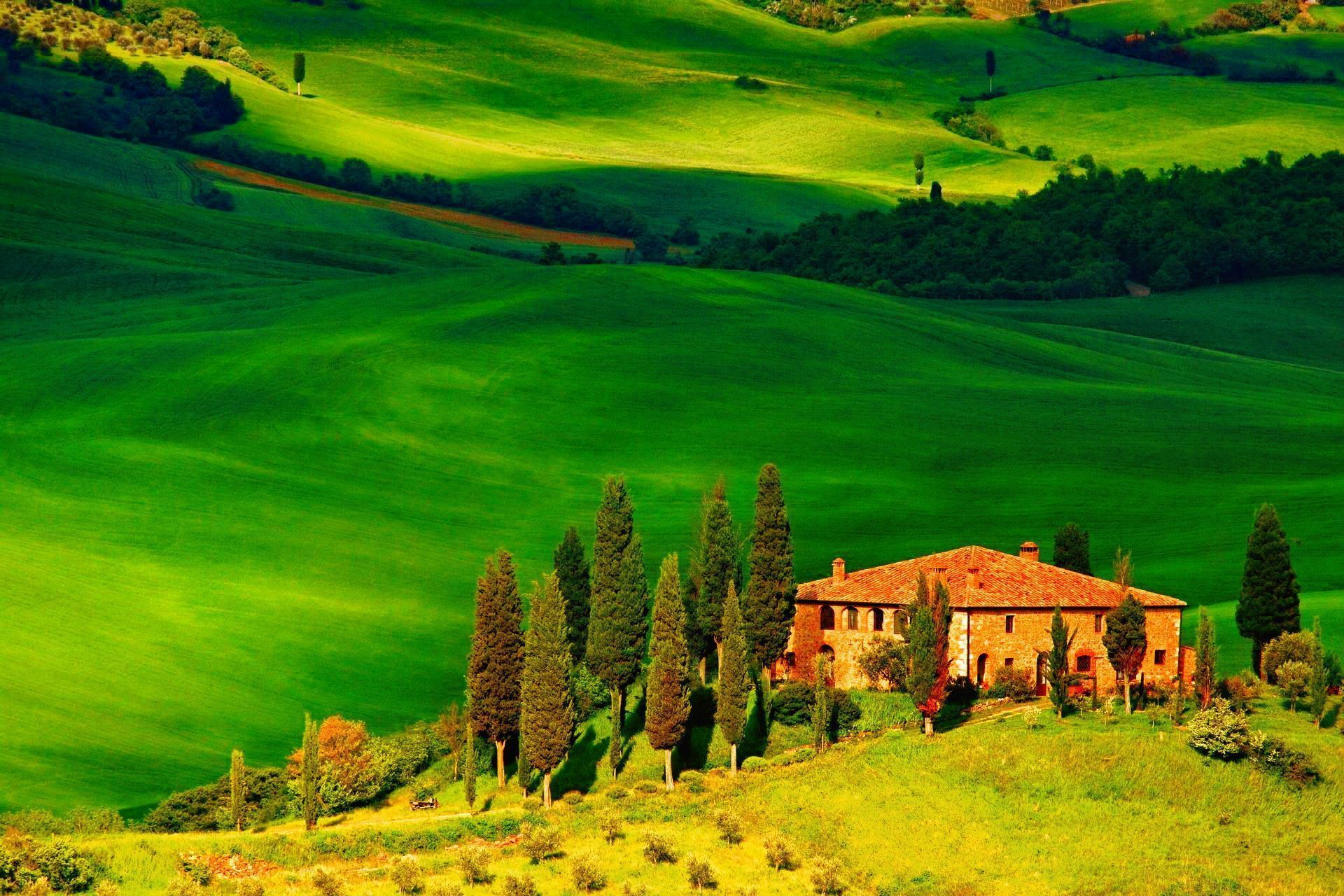 the perfection of tuscan wines due to the best environments of tuscany italy