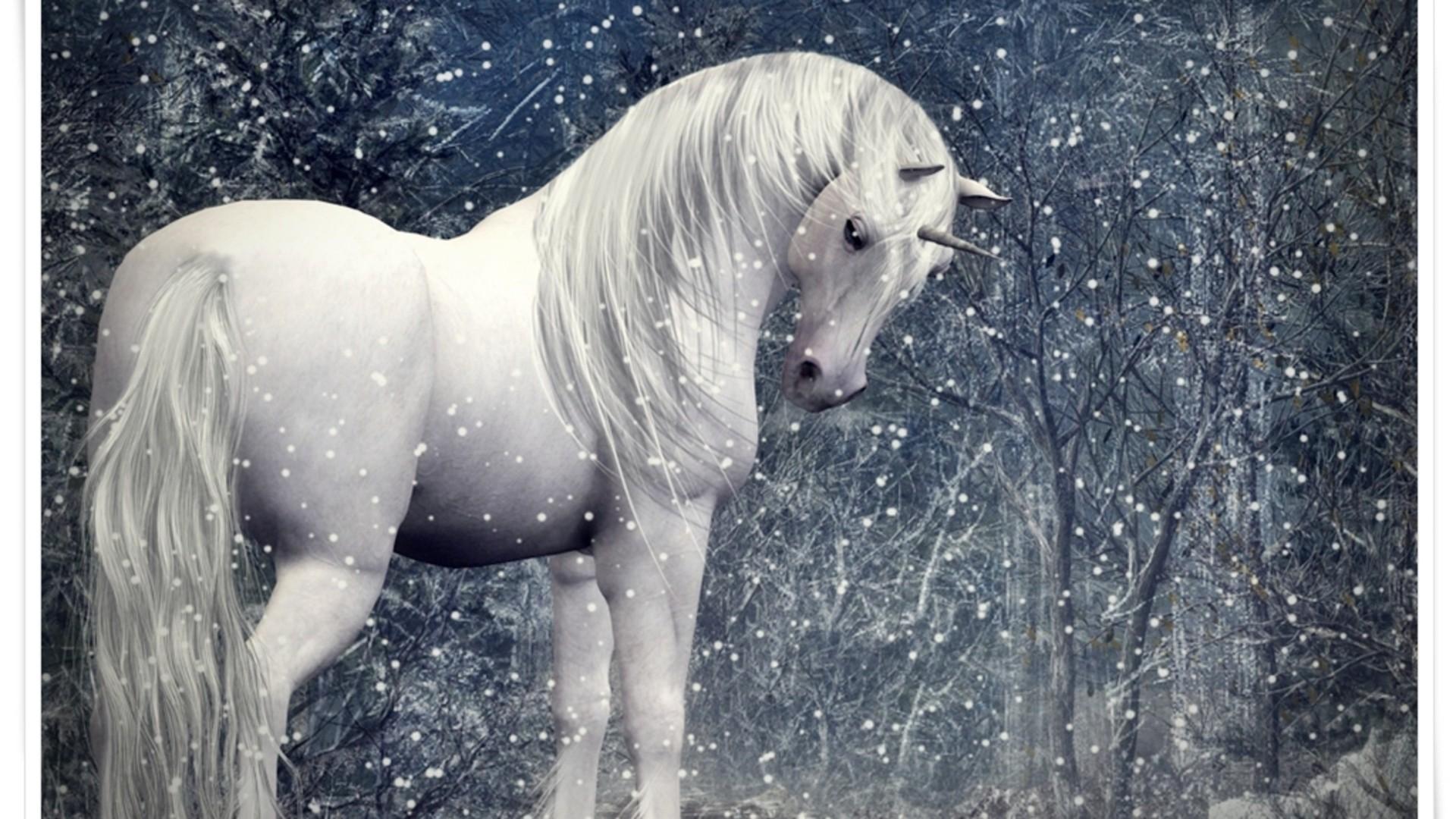 Unicorn pictures 40 high quality unicorn wallpapers full hd unicorn - Unicorn Pictures 40 High Quality Unicorn Wallpapers Full Hd Unicorn 28