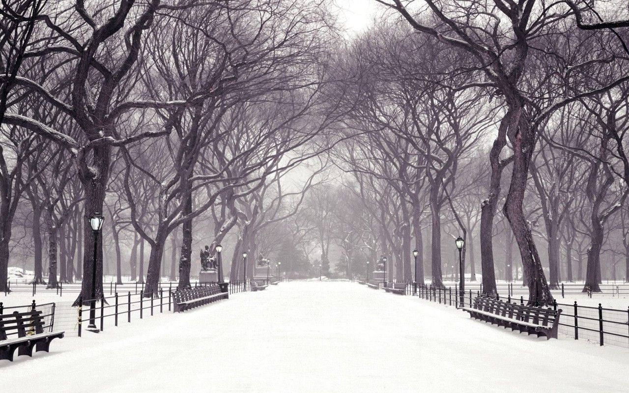 Extraordinary <b>Winter Wallpaper</b> For <b>Computer</b> - safety-equipment.us