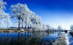 Winter Landscapes Photo