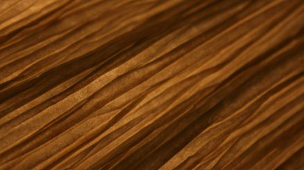 Woodgrain Photos