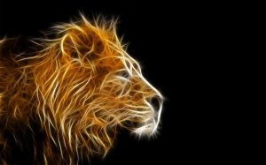 Abstract Lion Wallpaper HD