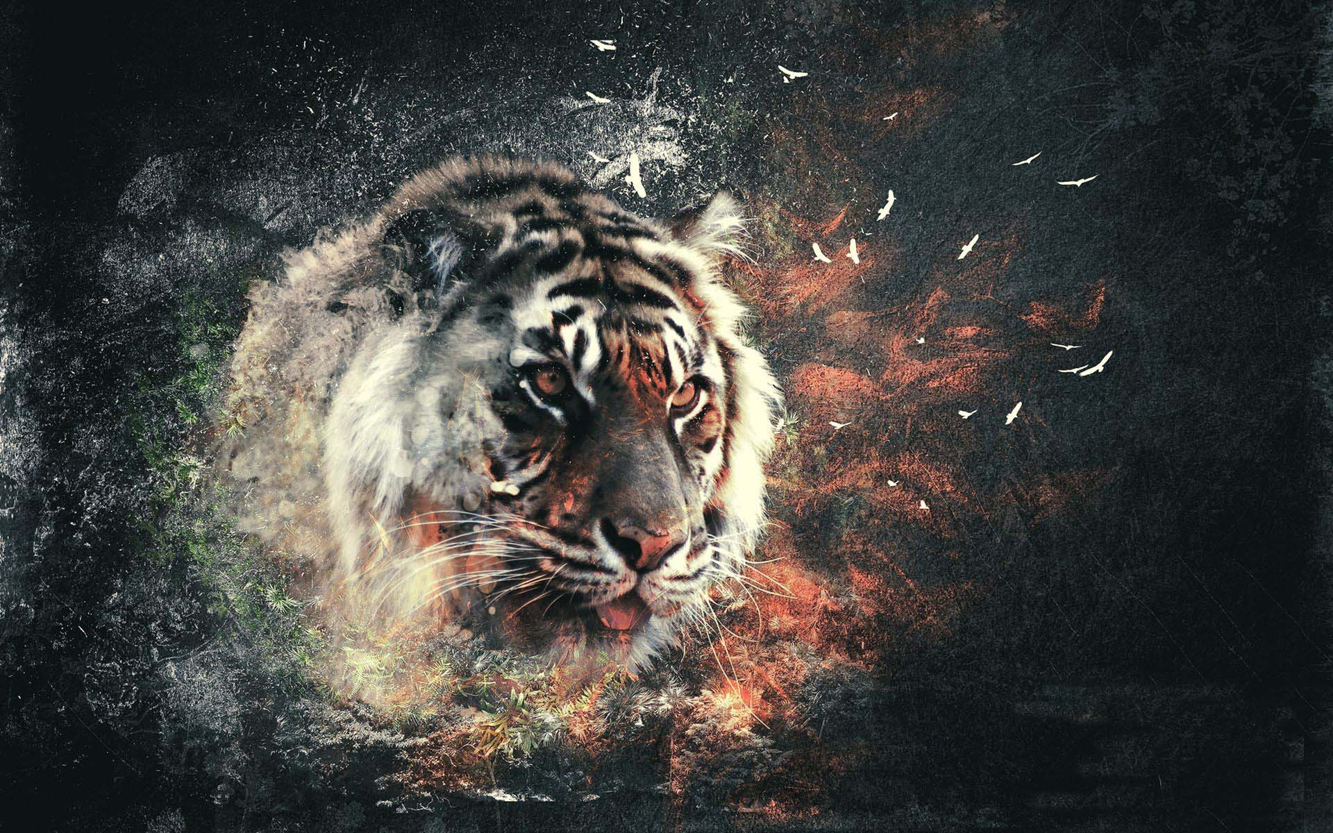 abstract-tiger-wallpaper