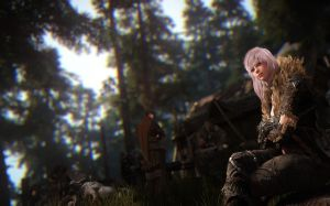 Black Desert Photos