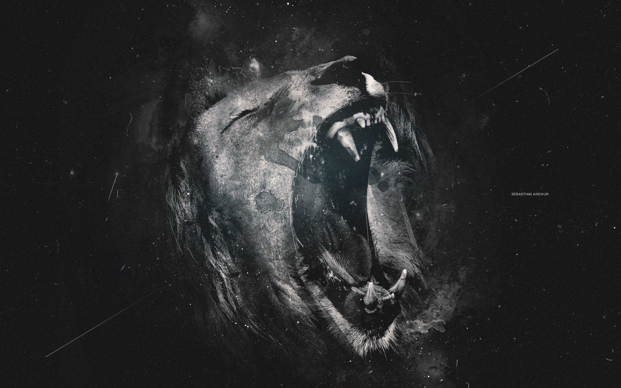 Best Black Lion Background In 4k Ultra Hd