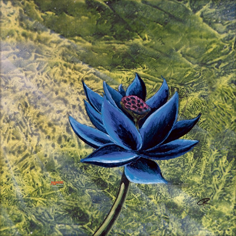 Creative Black Lotus Images Wallpapers Malone Gimbart