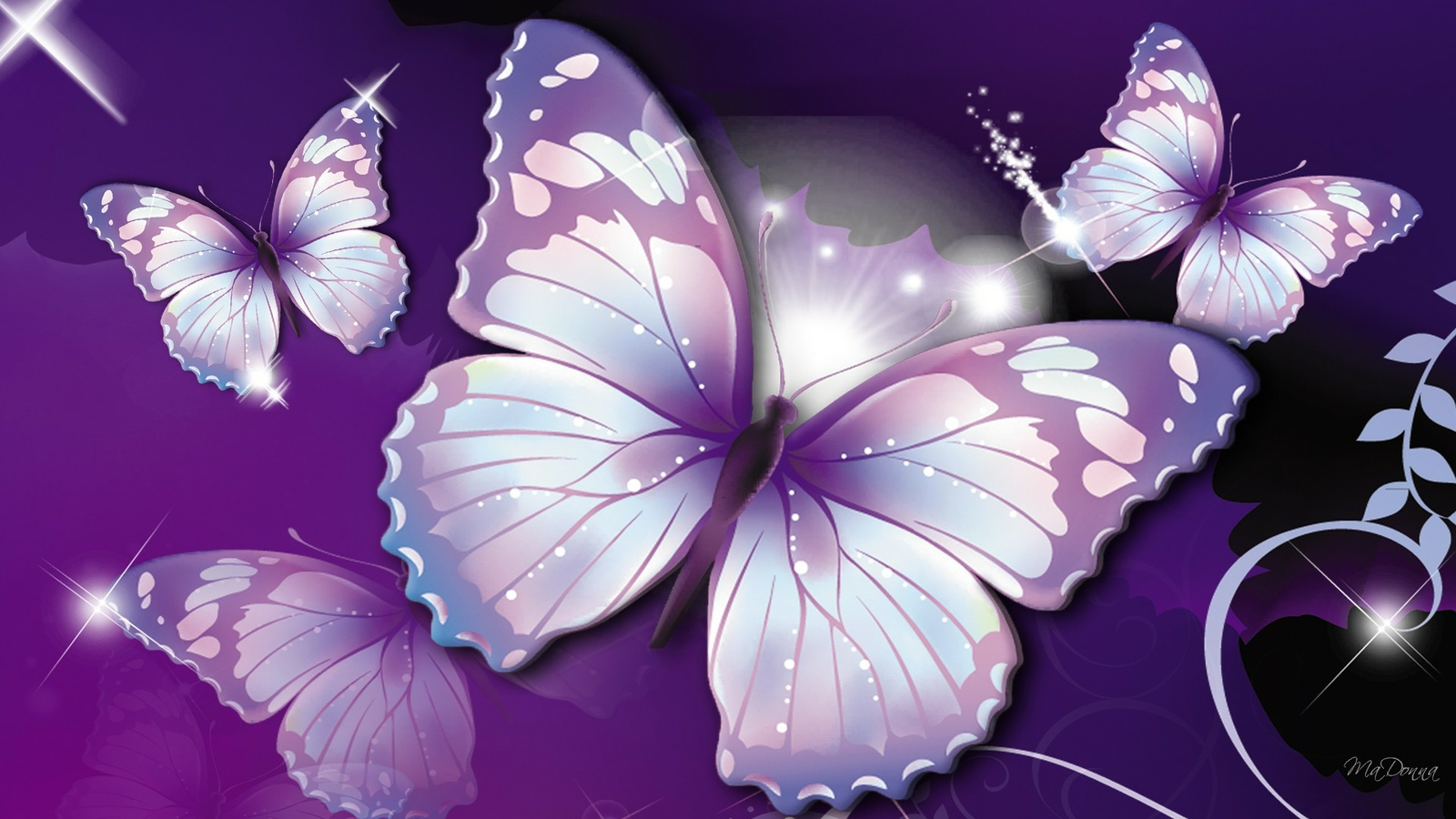 21 Beautiful Butterfly Wallpapers 4k Ultra Hd