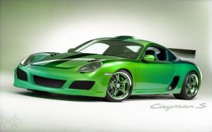 Cayman S Picture