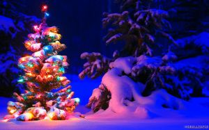 Christmas Tree Snow Wallpaper HD