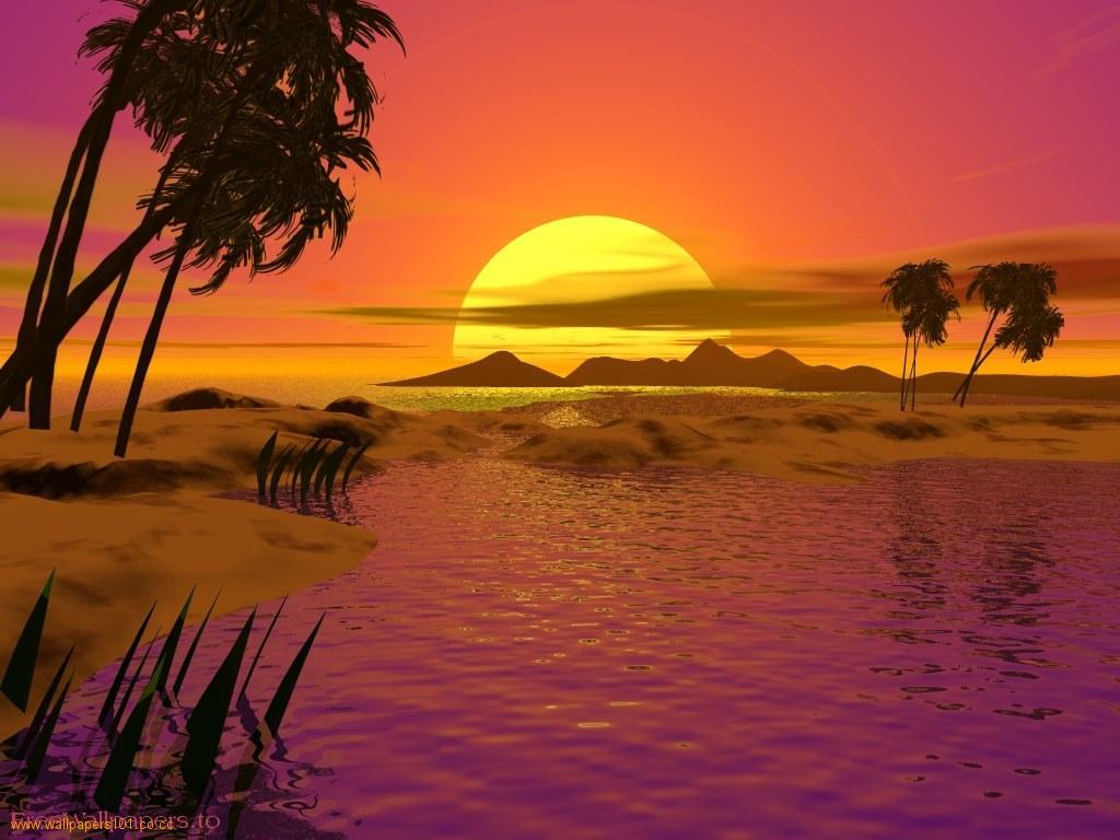Free Download Fine Sunset
