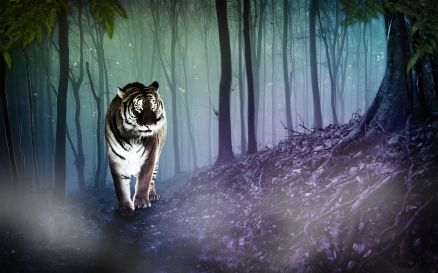 Fantasy Tiger Wallpaper