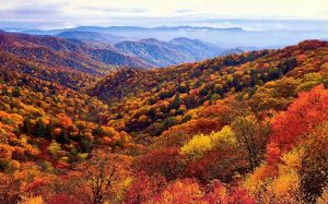 Images Of Great Smoky Mountains