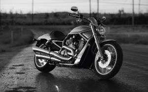 Harley Davidson Bike Photos