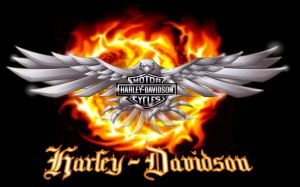 Harley Davidson Logo Photo