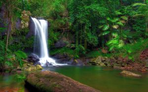 Nature Pic Collection #9360