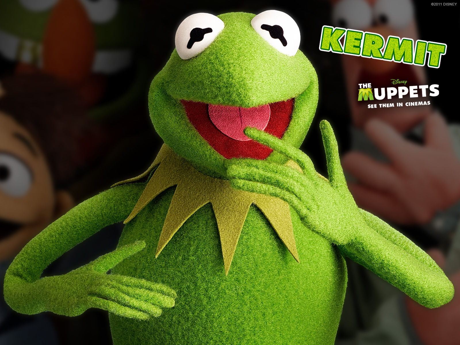 Adorable Kermit The Frog Pic In Hd
