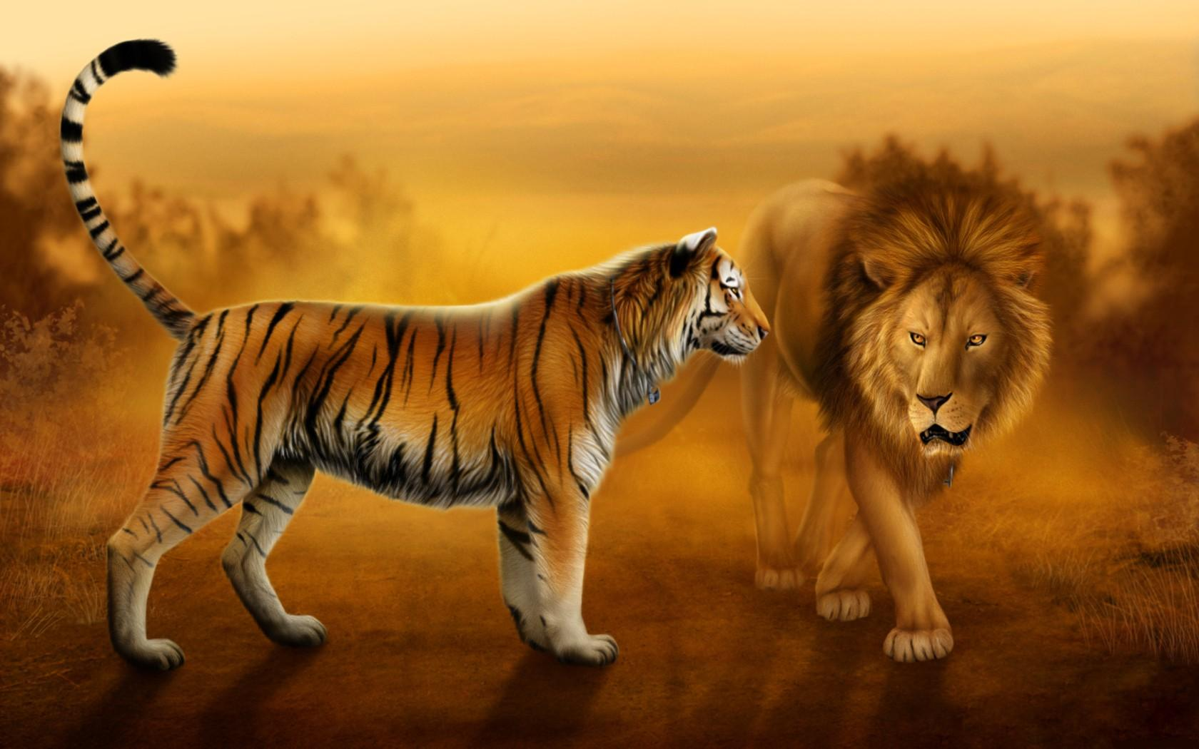 Lions And Tigers Wallpapers 100 Quality Hd Images