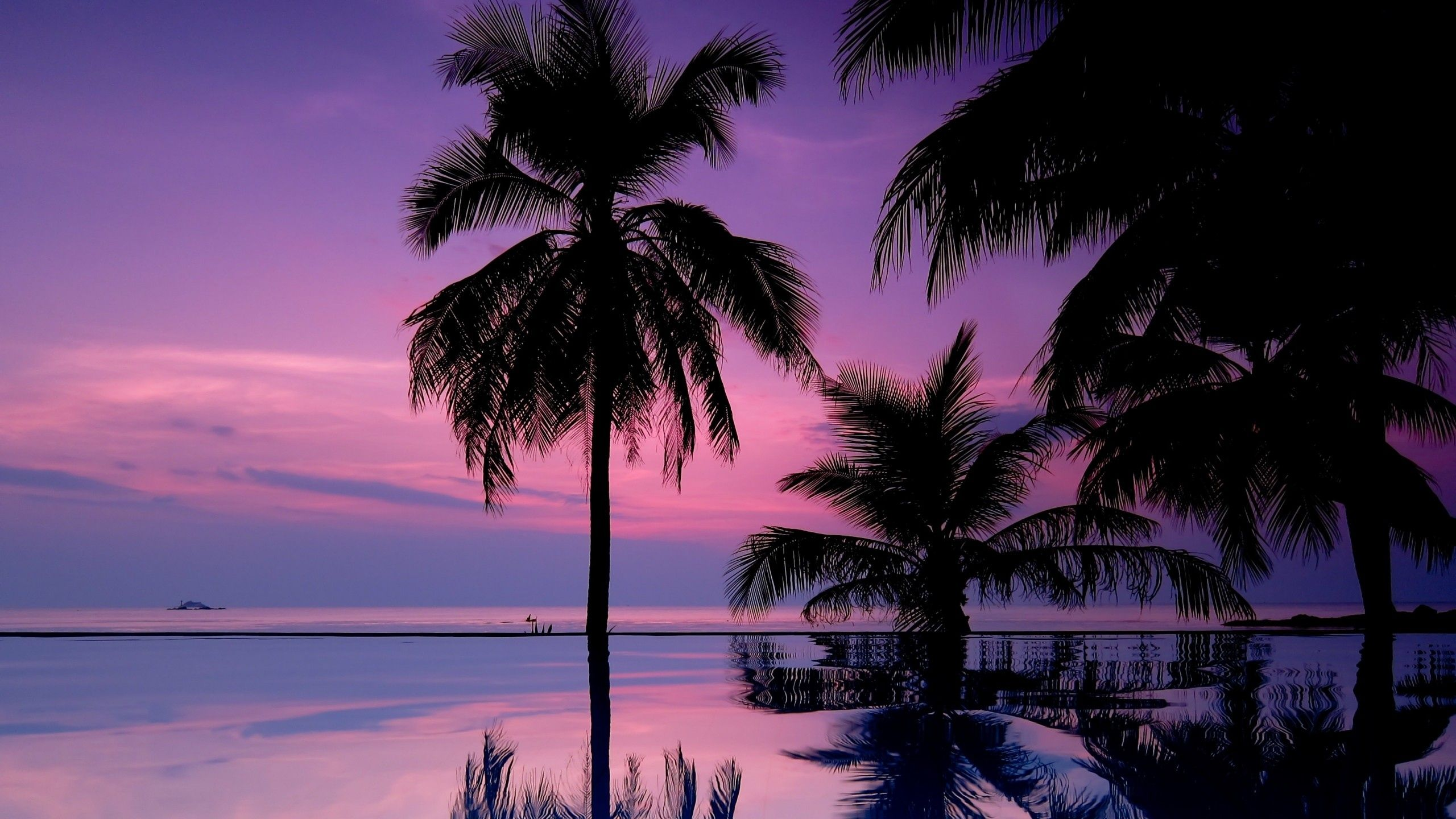 palm-trees-backgrounds