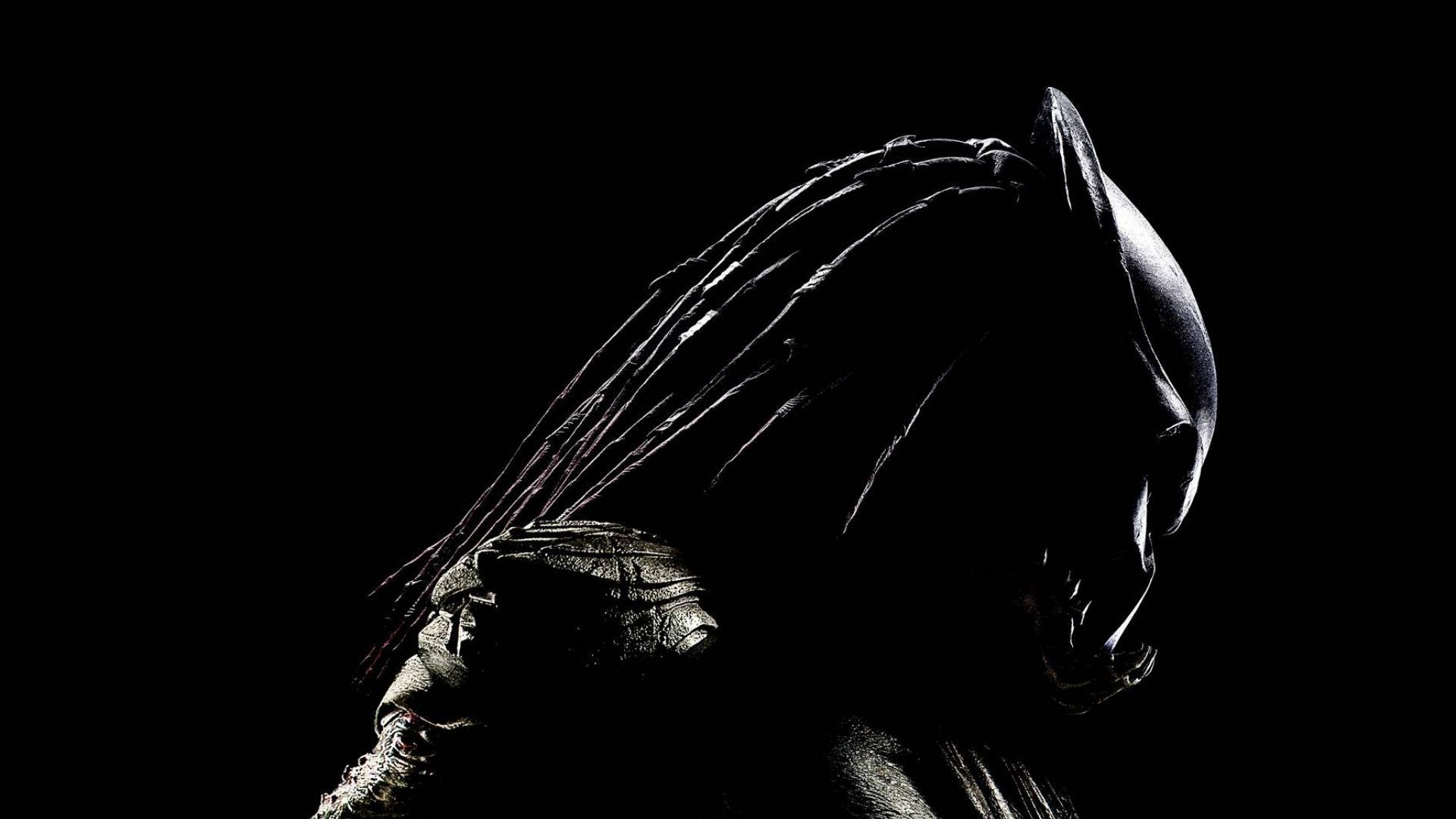 18 Beautiful Predators Wallpapers Widescreen
