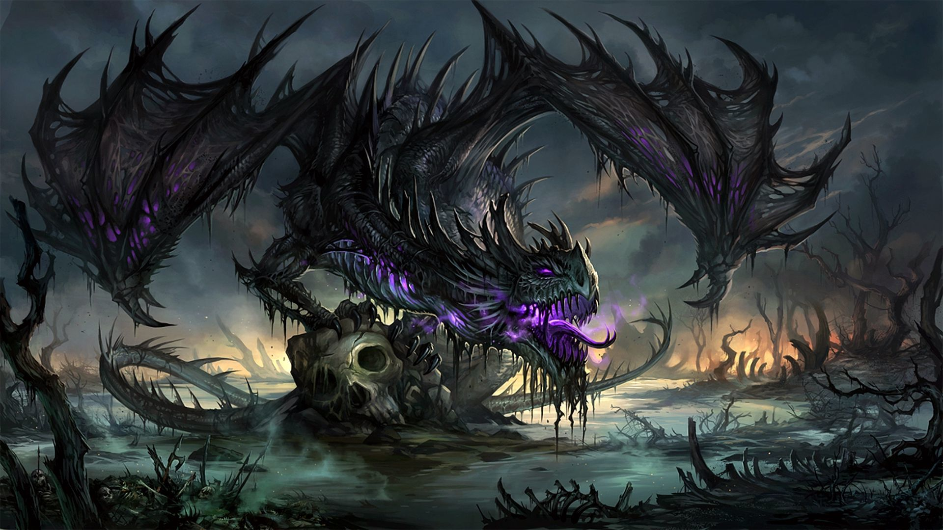 High Definition Dragon Wallpapers