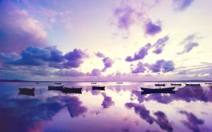 Purple Sunset Picture