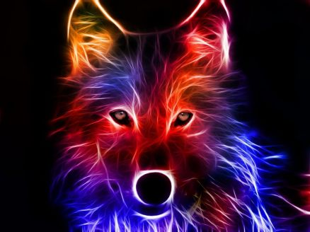 Wallpaper Red Wolf