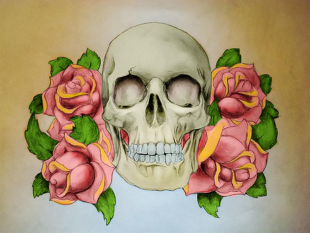 черепа картинки с розами