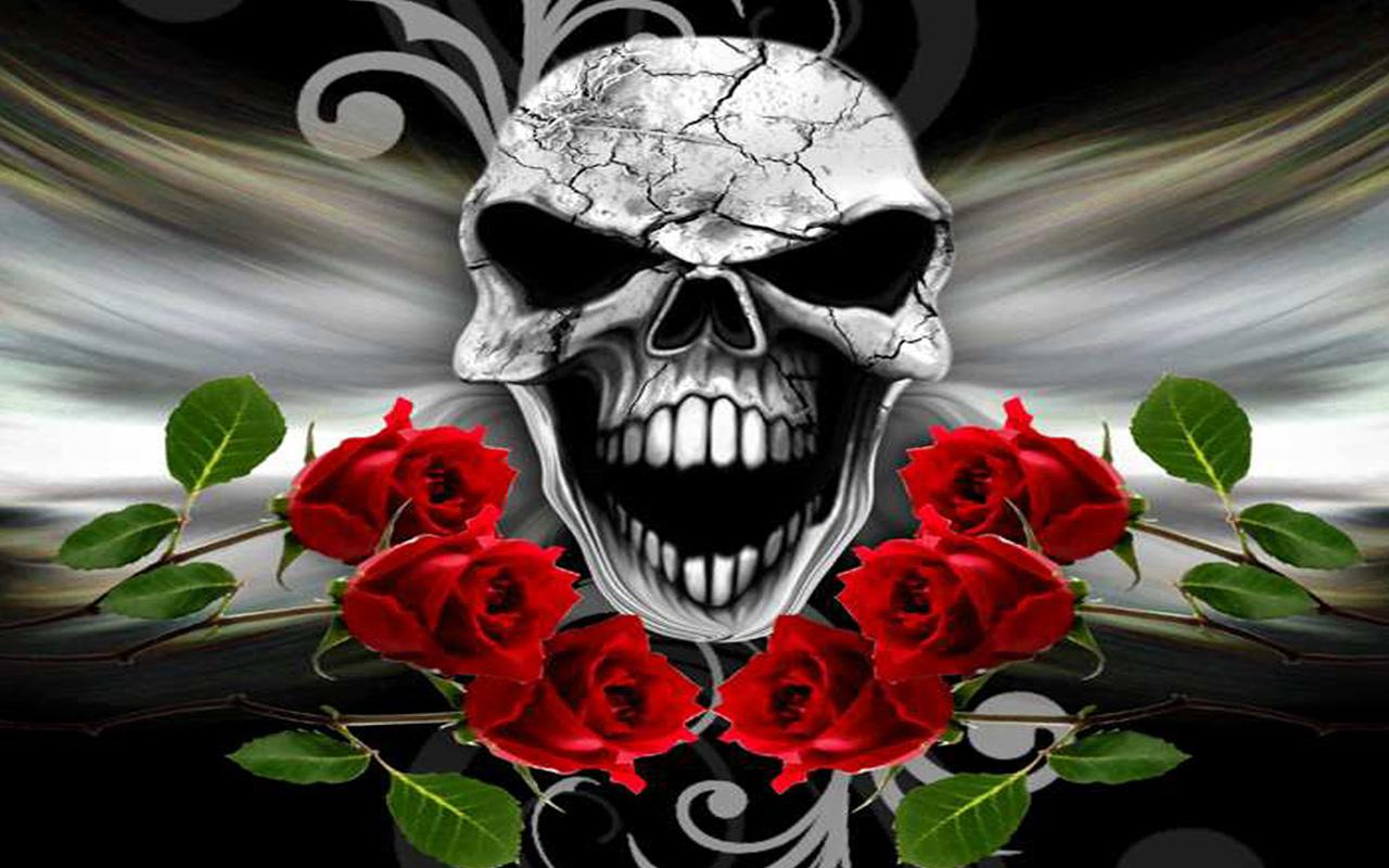 Skull And Roses Hd Backgrounds Brennan Kordes