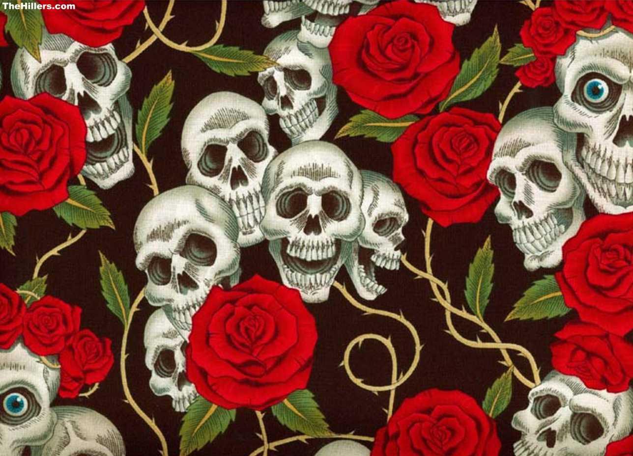 Skull And Roses Hd Backgrounds Brennan Kordes