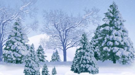 Wallpaper Snow Trees
